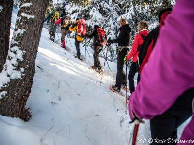 New Nordic Walking di Volpiano Ciaspole