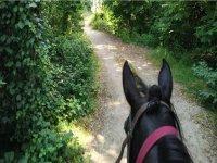 Durante la passeggiata a cavallo
