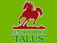 Centro Ippico Talus