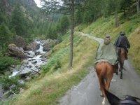 A cavallo nel bosco