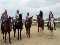 Everyone in the saddle
