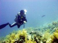 Esperienza in mare