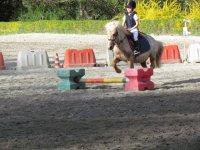 Corsi equitazioni bambini