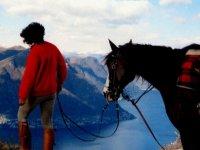 In compagnia del cavallo