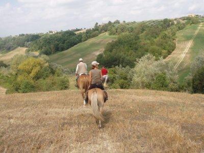 1giornata a cavallo+mezza pensione Lazio