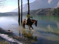 A cavallo in acqua