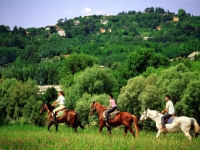 Associazione Sportiva Cavalieri Apuani