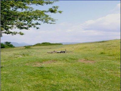 Tour Mountainbike routes of transhumance in Molise
