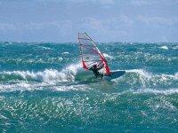 Windsurfing courses in Vieste