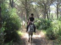 Mezza giornata a cavallo