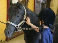 Primo approccio col pony