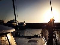 Escursioni catamarano Giornata intera all'Asinara