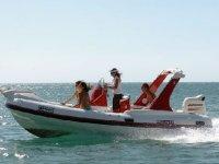 Navigare a Scilla