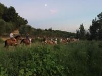 nelle campagne della Puglia