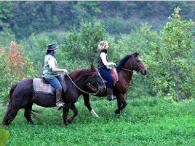 Azienda Agraria La Cerqua Passeggiate a Cavallo
