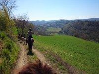 sulle nostre meravigliose colline