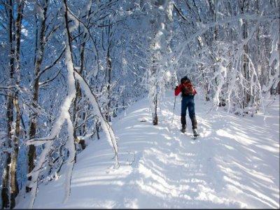 Snowshoe excursion to La Thuile mines 2 hours