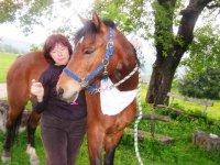 Nel verde col cavallo