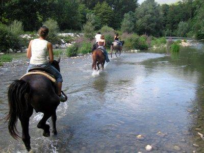 Passeggiata a cavallo full day in Sicilia