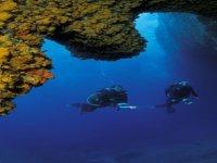 Immarsioni diving