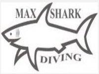 Max Shark Escursione in Barca