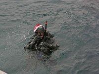 Sta per immergersi
