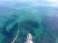 Acqua trasparente