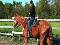 In sella a uno dei nostri cavalli