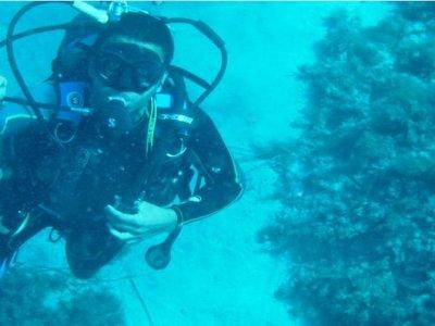 Sevinc Yachting Partners ltd Diving