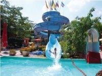 divertimento acquatico per tutti e corsi nuoto