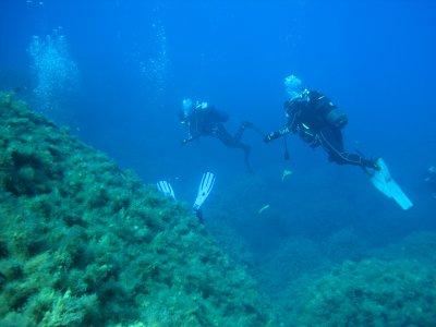 Aquatica Immersioni subacquee Diving