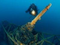 diving tremiti