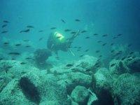 Circondato dai pesci
