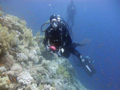 Willy Shark Divers Trento ASD