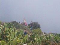 La vegetazione della Puglia
