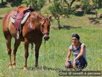 Oasi di cavalli e persone