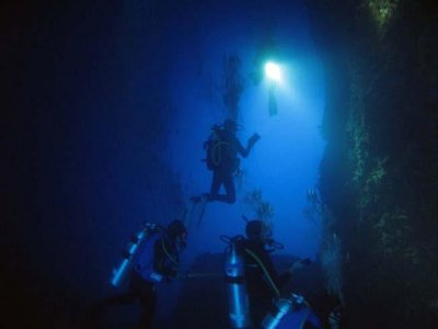 SDS Scientific Diving School