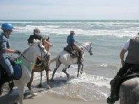 Al mare con i cavalli
