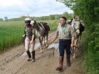 Passeggiata con i cavalli