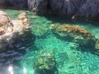 Le acque cristalline