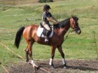 A cavallo con La Granzetta