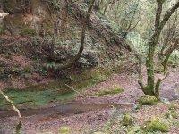 Trekking nella natura.JPG