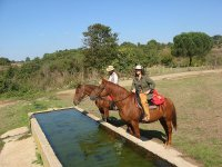 Turismo equestre Lazio