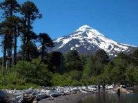 Trekking Volcan Lanin