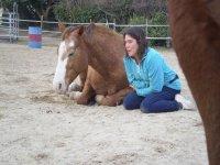 Attività coi cavalli