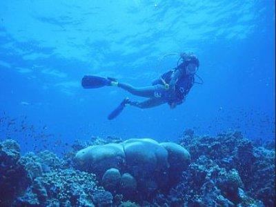 Scuba Diving Station