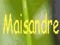 Le Maisandre Roccodomo