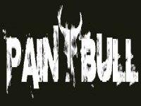 PaintBull Paintball