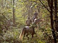 Passeggiate a cavallo nel Monferrato