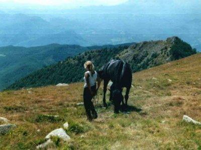 Gottero Ranch